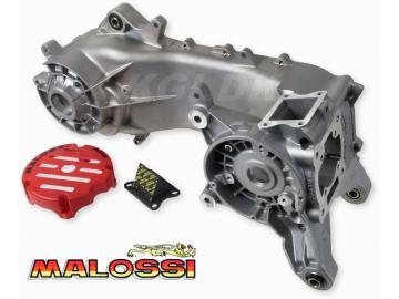 Motorblock Malossi C-One 70ccm Piaggio